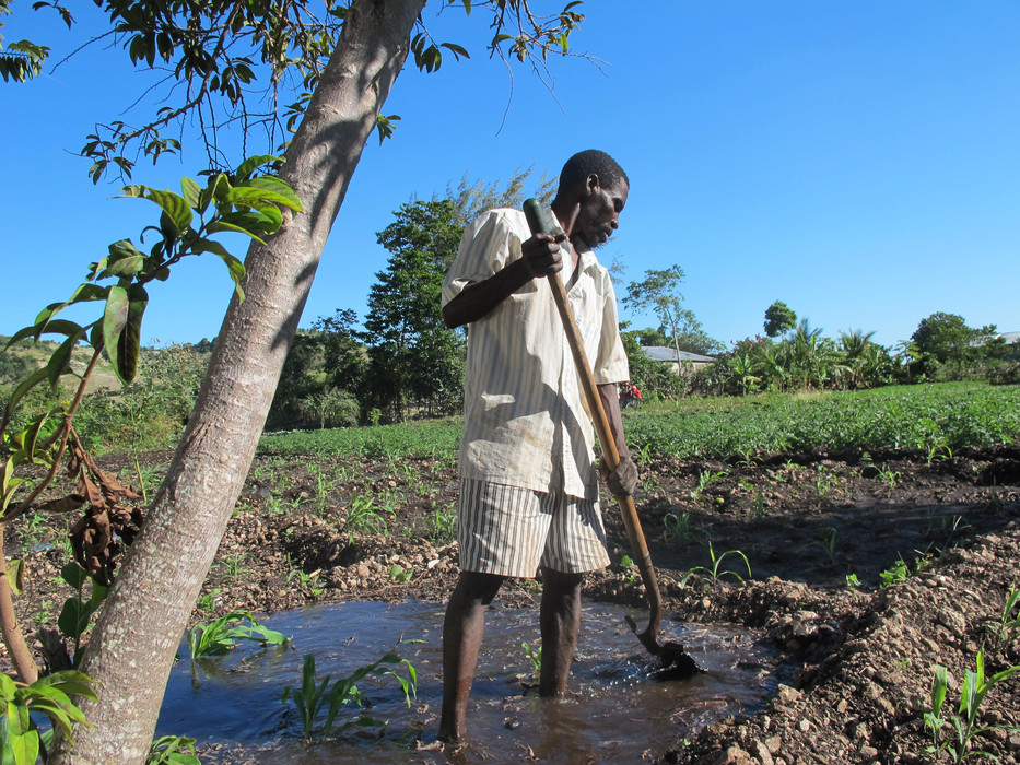 Oltin Saint Filet, prepares and plants his irrigated plot in Nan Carré, north-west region, Haiti. ©IFAD/Sarah Morgan