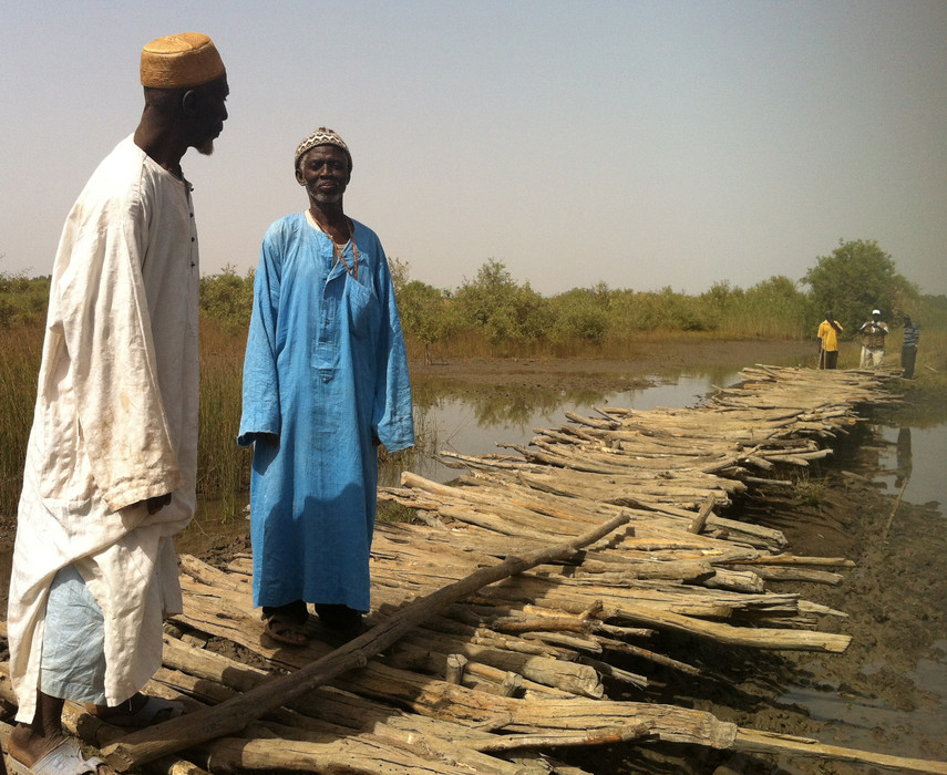 Masembeh village chief and an elder standing on their traditional wooden bridge, constructed prior to PIWAMP's support in The Gambia